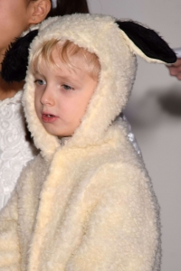 boy in sheep costume