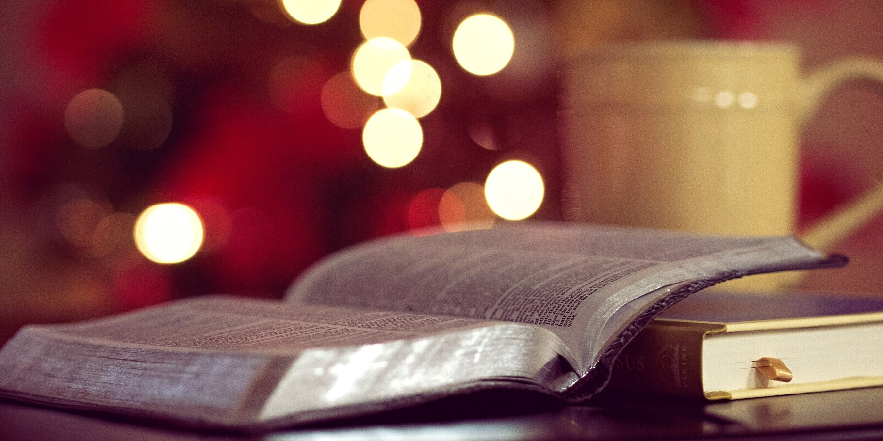 bible, book, mug, lights