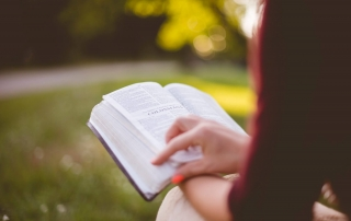 woman reading bible in park