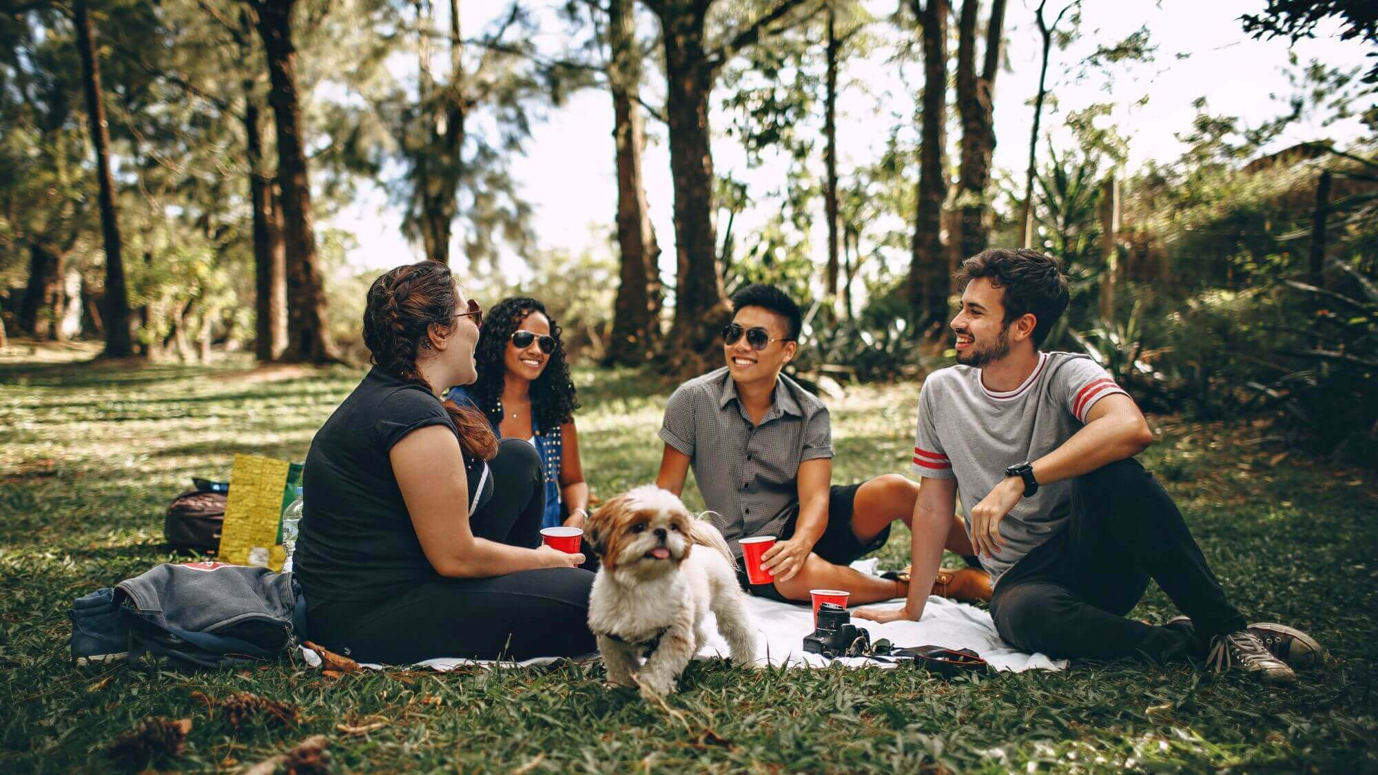 group of friends at picnic with dog in park